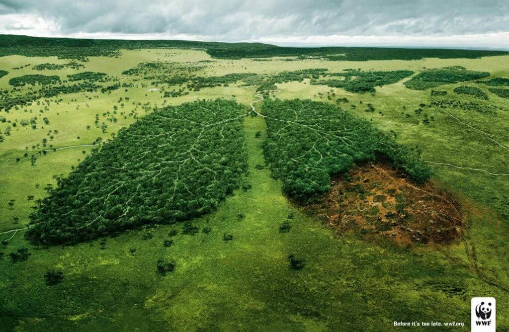 WWF Green Lungs