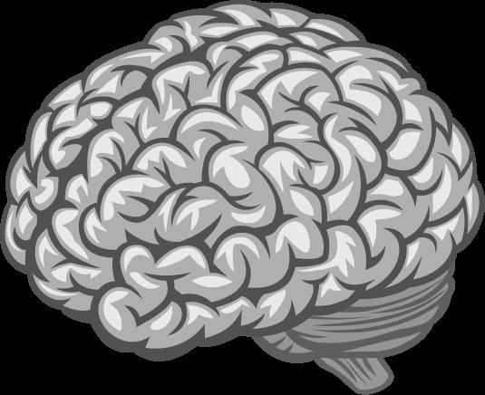 Cognitive biases codex quiz